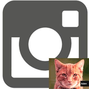 Фильтры в Инстаграме