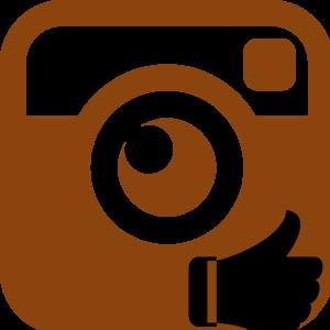 Рекомендуемое в Инстаграме логотип