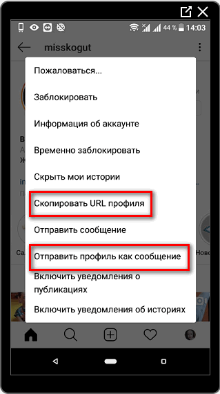Отправить профиль, как сообщение в Инстаграме
